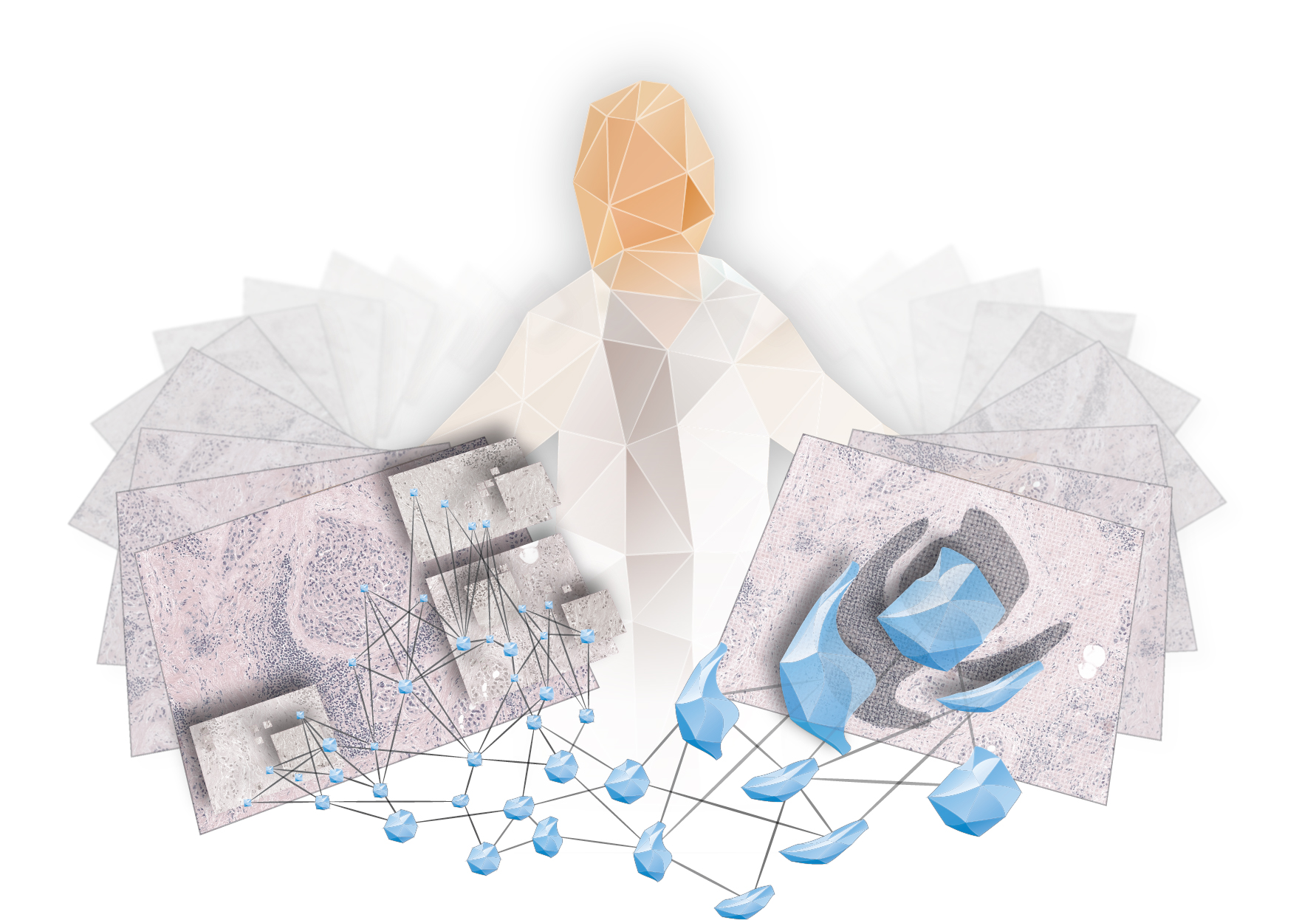 Where can i find information on how digital imaging has affected the medical field?